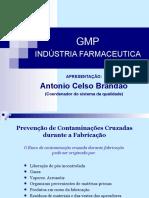 49411840-GMP-Industria-Farmaceutica-1