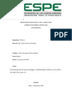Caracterización de Plagas y Enfermedades en Maíz