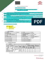 Formato - Informe mensual- T- Remoto- 1