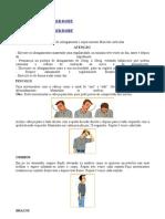 Exercícios para evitar LER-DORT