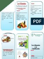 396367965-Triptico-Los-Alimentos-y-Su-Clasificacion.doc