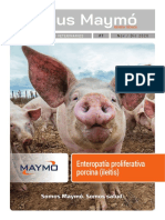 Focus Maymo_7_PORCINO_ILEITIS_11_122020