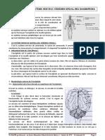 COURS COMPLET TERMINALE-1.pdf
