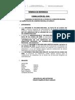 TDR IOAR.docx