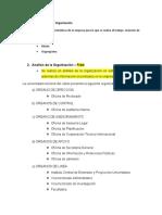 ANALISIS DE LA ORGANIZACION