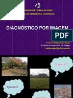 Diagnostico_por_imagem_2014_-_aula_1 (1).pdf