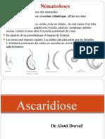ascaridiose.ppt