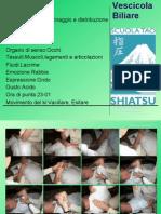 trattamento-meridiani-masunaga-del-legno