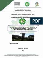 EJEMPLO DE INFORME DE INDUSTRIAS ALIMENTARIAS