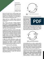 TCC resumo bibliografia