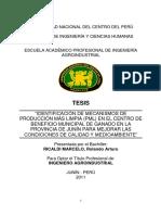 Ricaldi Marcelo.pdf