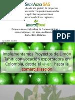 Presentacion Sisdeagro Proyectos Colombia