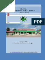 PROFIL PKM 2019.docx