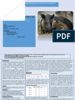 exposicion del tapir, grupal
