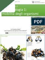Lezione 4 Parte 2 - Paleoecologia 1 (Mobilita' Degli Organismi)