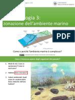 Andrea Baucon, Corso Di Paleontologia - Lezione 6 - Paleoecologia 3 (Zonazione Dell'Ambiente Marino)