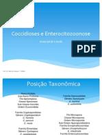 Coccidioses e Enterocitozoonose