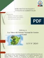 GESTION DE PROYECTOS SOCIALES Y POLITICAS Y POLITICAS