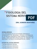 FISIOLOGIA DEL SISTEMA NERVIOSO.pptx