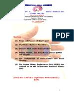 implantable kidney