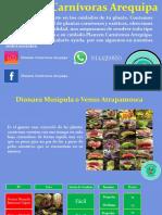 Catalogo-Planzen-Carnivoras-Arequipa