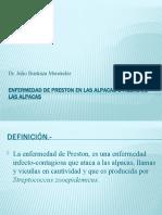 4. ENFERMEDAD DE PRESTON EN LAS ALPACAS O FIEBRE