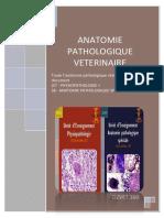 Anatomie Pathologique Vétérinaire - Combinaison-DZVET360-Cours-veterinaires