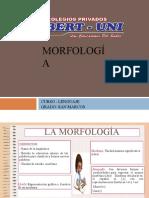 MORFOLOGIA-ACADEMIA
