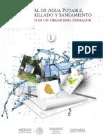 SGAPDS-1-15-Libro1.pdf