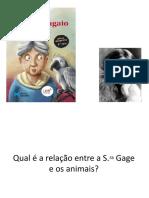QUIZ_A Viúva e o Papagaio_Virginia Woolf_Power Point (1).ppsx