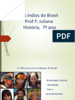 OS ÍNDIOS DO BRASIL 7 ANO