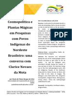 Cosmopolítica das plantas mágicas no Nordeste brasileiro
