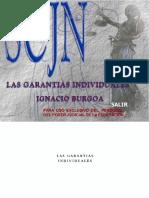 Ignacio B Garantias individuales