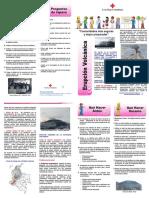 erupcion_volcanica_3112011_101625.pdf