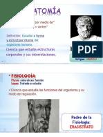 anatomia n2.pdf