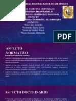 GRUPO 2- PROCESO CONTENCIOSO DOS ETAPAS (1)