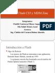 Taller de Flash CS5 y MDM Zinc
