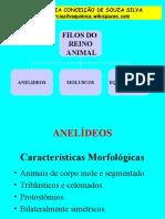 ANELIDEOS - MOLUSCOS - EQUINODERMAS