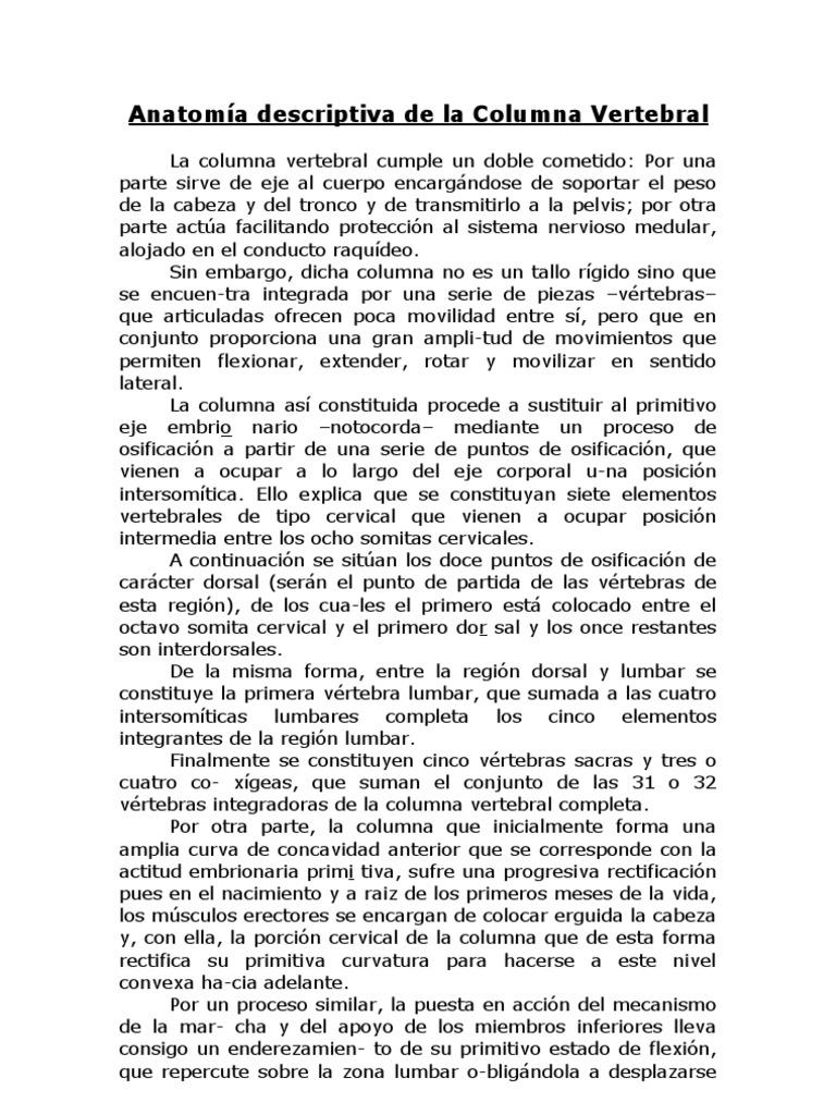 Acupuntura-Anatomía descriptiva de la Columna Vertebral