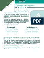 PDF+FUERTAFIT+-++CARGAS+GYM+Nivel+3