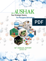 Paushak Limited Annual Report 2018-19.pdf