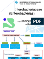 aula-enterobacteriaceae-para-veterinaria-2019.pdf