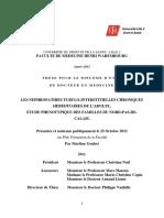 2012LIL2M284.pdf