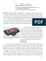 Churrasco.pdf