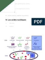 acides nucleiques.pdf
