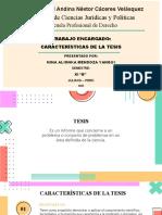 Mendoza Yanqui Nina Alionka- XI-B- caracteristicas de la tesis