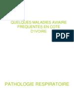 Maladies du Poulet.pdf