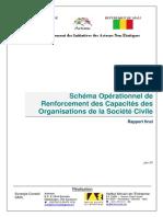 schema-operationnel-de-renforcement-des-capacites