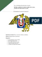 Ensayo y Resumen Grupal s1