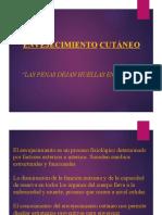 Presentación - Envejecimiento cutaneo.pptx